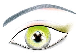 Oči - výraz ženskosti a sex-appealu