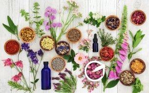 Najlepšie bylinky vhodné na pokožku: Kúra, ktorú musíš vyskúšať!