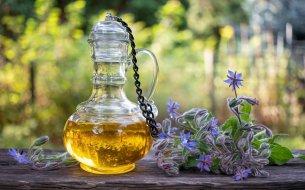 Borákový olej – čo všetko dokáže? Budeš sa čudovať!