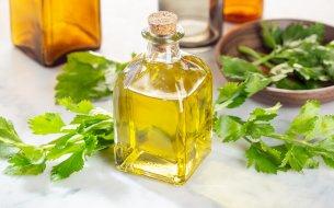 Prečo začať používať zelerový olej? Jeho účinky ťa presvedčia!