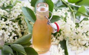 Najlepšie recepty z bazy a jej kvetov: Týchto 5 sa oplatí vyskúšať!