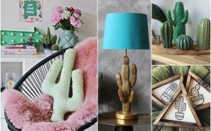 Kaktusové dekorácie do domácnosti: Nechaj sa inšpirovať!